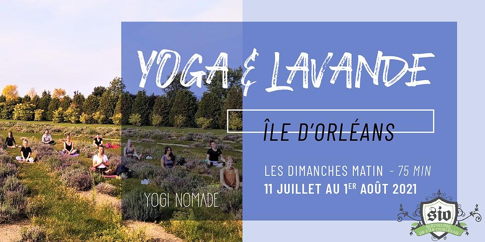 Yoga & Lavande