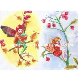 [ Fairy ]