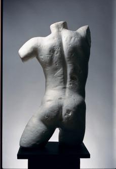 torso still final.jpg