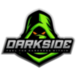 ds-logo-1-color.png