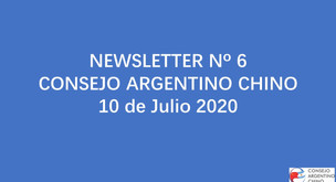 NEWSLETTER Nº 6 - Consejo Argentino Chino