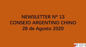 NEWSLETTER Nº 13 - Consejo Argentino Chino