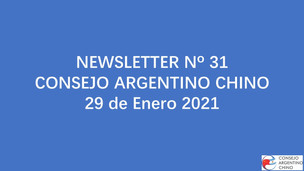 NEWSLETTER Nº 31 - Consejo Argentino Chino