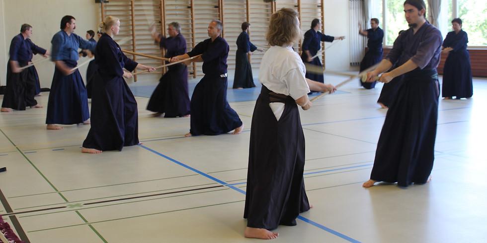 Swiss Alps Jodo Seminar in Thun