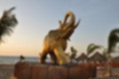 discoteca SALADINO,elefantes para exteri