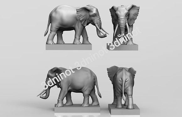 ref. 105 elefante RC