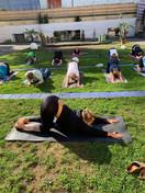 Yoga Majolika 6