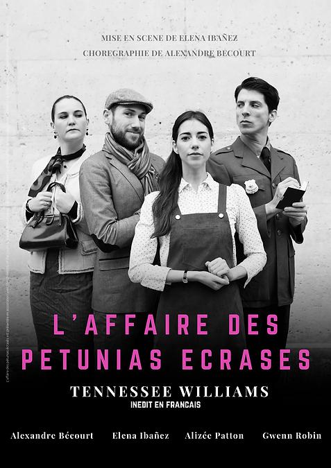 L'affaire_des_ppétunias_écrasés_BR_2.