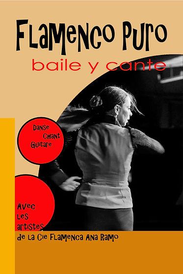 Flamenco_puro_au_Pixel_cópia_(1).jpg