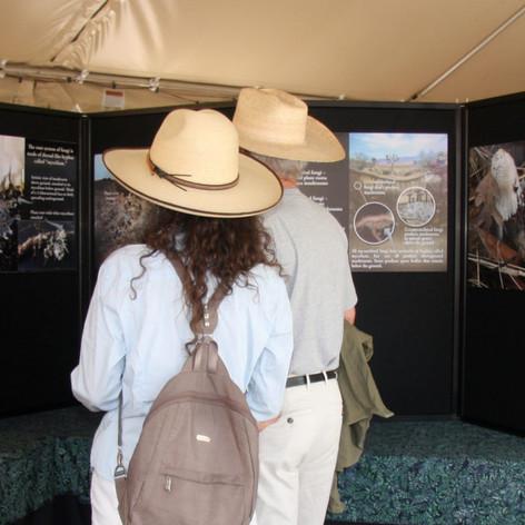 Visitors viewing desert underground exhibit