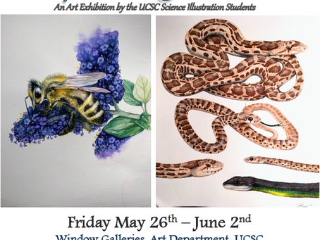 UCSC bringing natural history and art together in upcoming show: Inspired by Nature