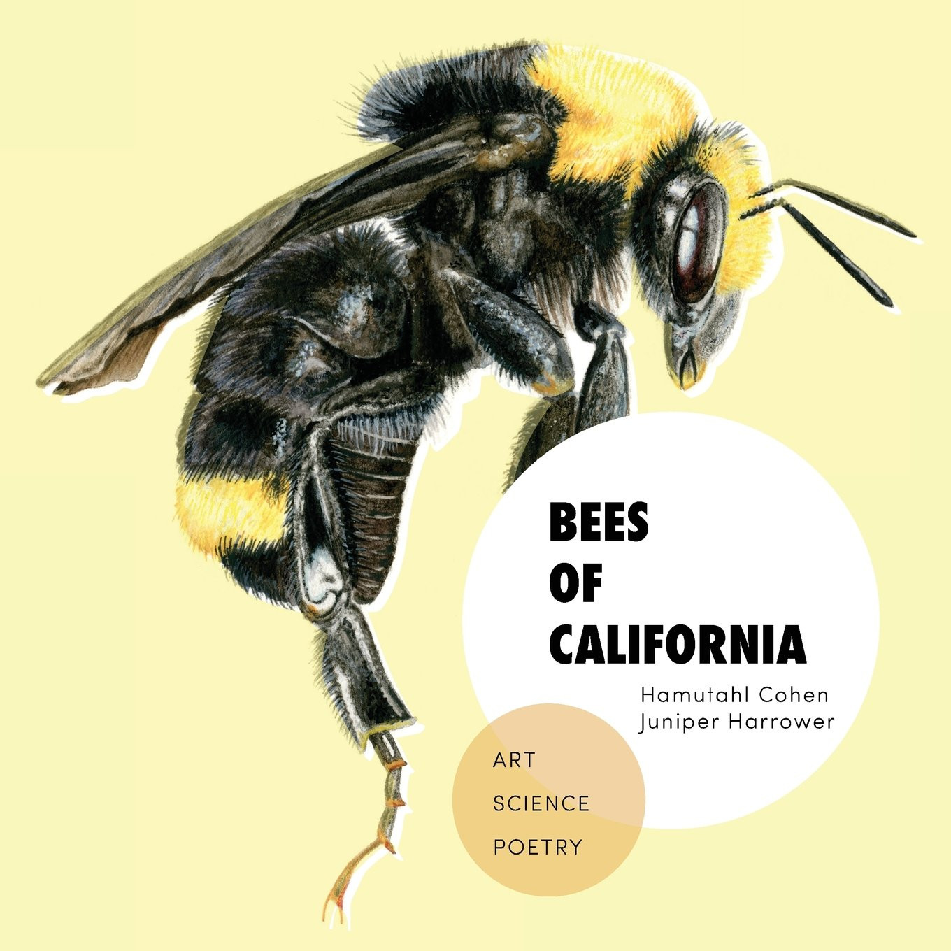 Bees of California book