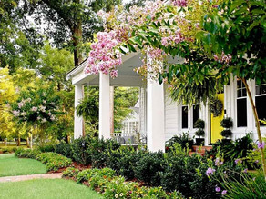 Landscape ideas to attract home buyers.