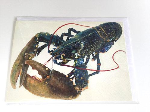 Scottish Lobster // Greeting Card