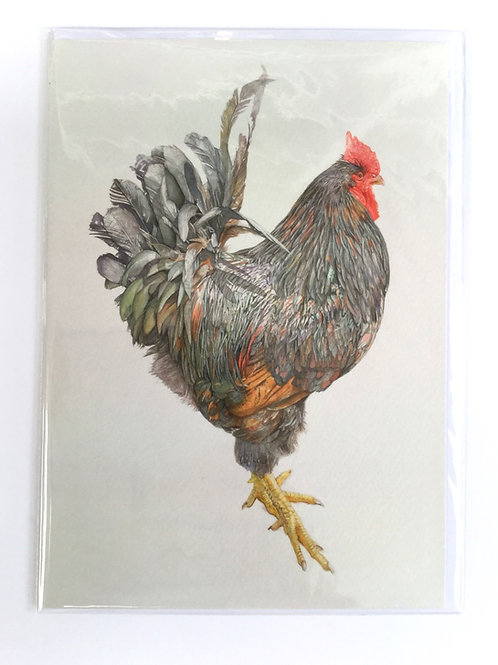 Emerald Barnevelder Cockerel // Greeting Card