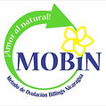 Logo MOBiN, CFR