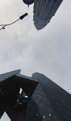 Opposing Towers