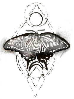 Day 14 Butterfly