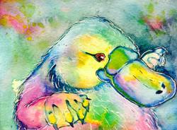 Rainbow Playpus