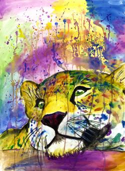 Daydreaming Jaguar