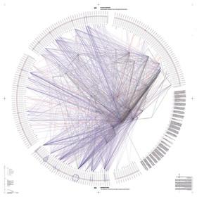 02_Human_flows_72dpi - infographic brazi