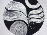 Lucy's notorius circles