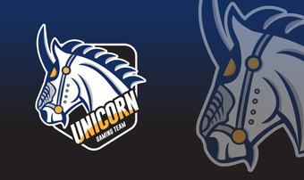 Unicorn Gaming Team-04.jpg