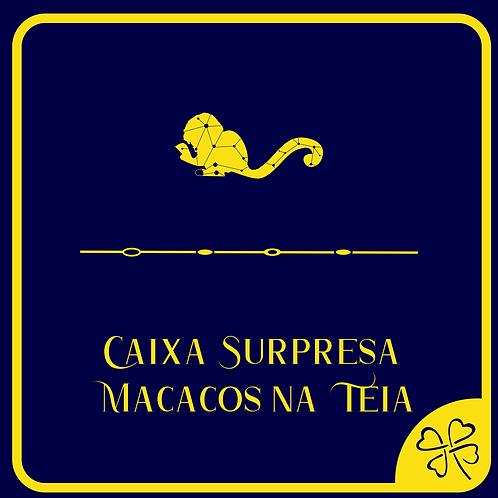 Caixa Surpresa Macacos na Teia