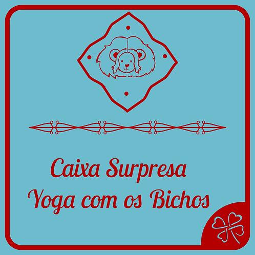 Caixa Surpresa Yoga com os Bichos