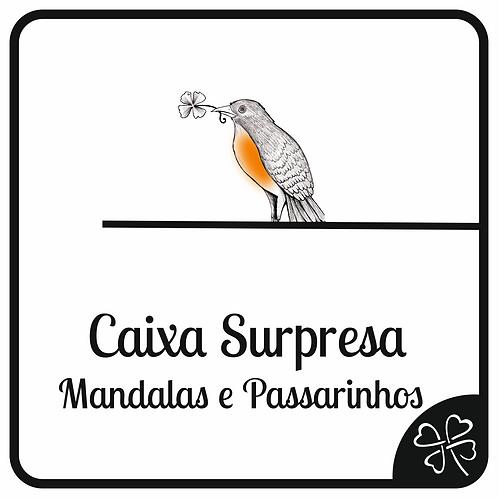 Caixa Surpresa Mandalas e Passarinhos