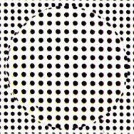 nikon-lite-as-02 (1).jpg