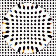 nikon-lite-as-01 (1).jpg
