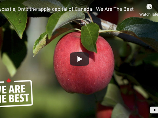 We Are the Best: Canada's Largest Apple Producers