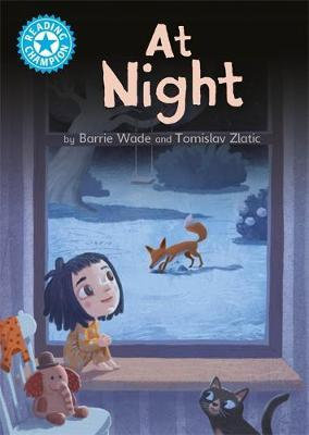 At Night (Reading Champion Blue 4)