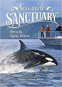 Orca In Open Water (Seaside Sanctuary)