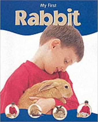 My First Rabbit (Hardback)