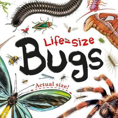 Life Size Bugs (Hardback)