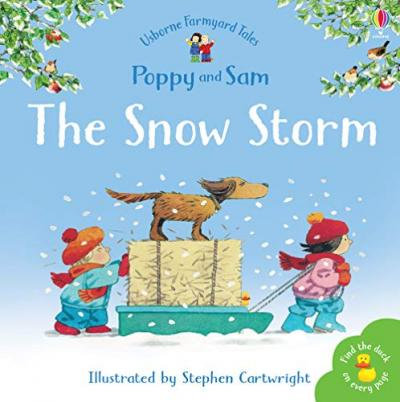 The Snow Storm (Poppy And Sam)