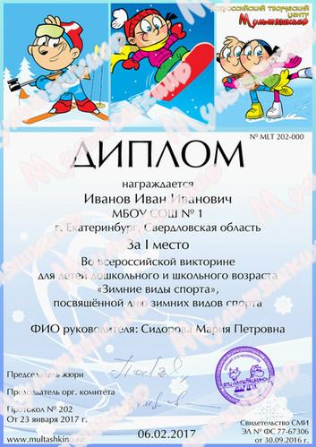 Зимние виды спорта.jpg