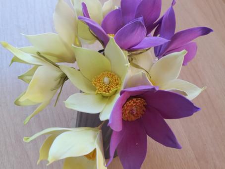 Первый весенний цветок – подснежник