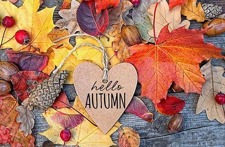 «Здравствуй, разноцветная осень!»