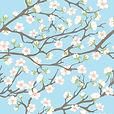 Весна в объективе.jpg