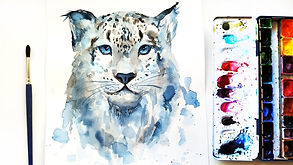 «Животные мира»
