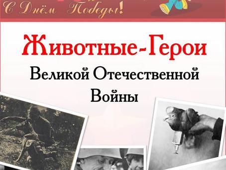 """Папка-передвижка """"Животные - герои Великой Отечественной войны"""""""