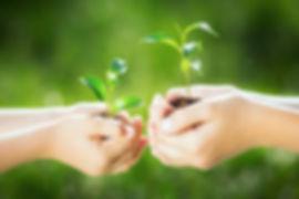 конкурс про экологию для детей и взрослых