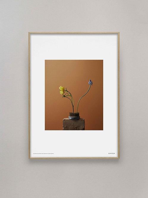 Spring Flower, Kinfolk x Alium, 50cm x 70cm