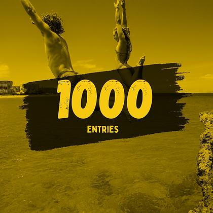 1000 Entries
