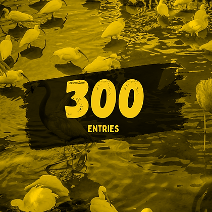 300 Entries