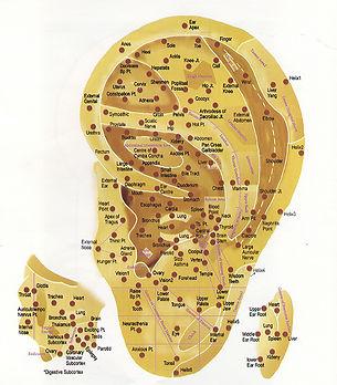 ear chart