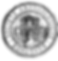 logo SAB noir.png